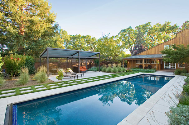 Contemporary Pool by Marcus & Willers Architects