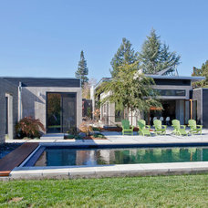 Modern Pool by Elevation Architects