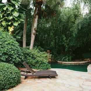 マイアミの大きいキドニーシェイプトロピカルスタイルのおしゃれなプール (天然石敷き) の写真