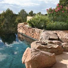 Mediterranean Pool by Clemens & Associates Inc.