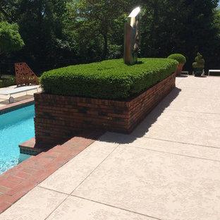 Esempio di una piscina monocorsia classica rettangolare dietro casa e di medie dimensioni con pedane