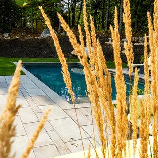 Imagen de piscina contemporánea, de tamaño medio, rectangular, con adoquines de piedra natural