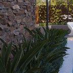 Agave Attenuata Eclectic Landscape San Luis Obispo