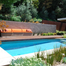 Modern Pool by Jeremy Taylor Landscapes