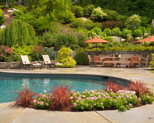 Poolside landscaping houzz for Pool landscaping