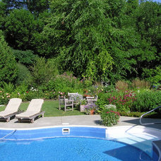 Traditional Pool by Outdoor Excapes of Lake Minnetonka