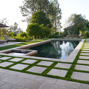 This is an example of a mediterranean rectangular pool in San Diego.