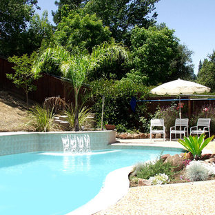 This is an example of a large traditional backyard custom-shaped lap pool in San Francisco with a water feature and decomposed granite.