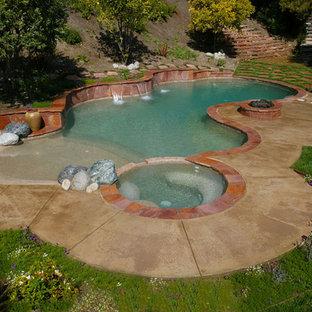 Ejemplo de piscinas y jacuzzis naturales, clásicos renovados, de tamaño medio, a medida, en patio trasero, con losas de hormigón