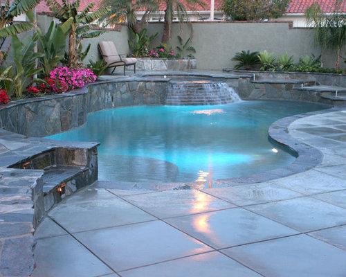 Kidney Shaped Natural Pool Design Ideas Renovations Photos