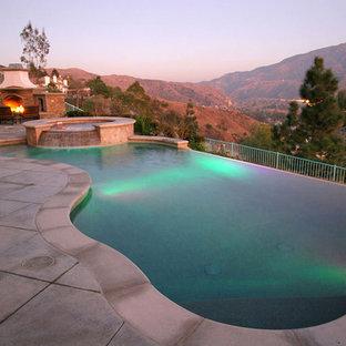 Foto de piscinas y jacuzzis infinitos, contemporáneos, grandes, tipo riñón, en patio trasero, con adoquines de hormigón