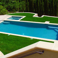 Modern Pool by Swan Pools