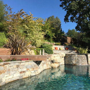 Inspiration for a large modern backyard stone and custom-shaped natural hot tub remodel in San Francisco