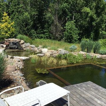 Swim Pond by the River - Caledon, Ontario