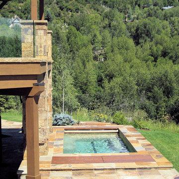 Swim Spa - Aspen, CO