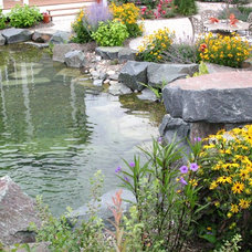 Traditional Pool by Landscape Design Studios
