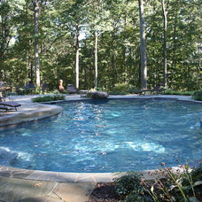 Traditional Pool by Urban Gardens Inc.