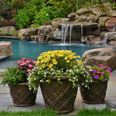 Traditional Pool by Scenic Landscaping