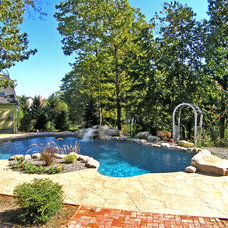 Traditional Pool by Aquascape Pool Designs