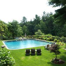 Traditional Pool by Aquascape Pool Designs