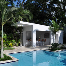 Tropical Pool by URBANoRDER/tampa, inc