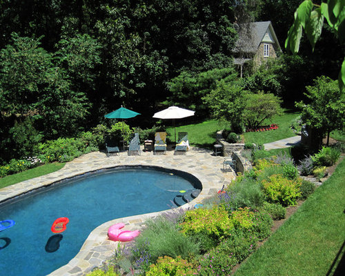 Kidney shaped pool houzz for Images of kidney shaped pools
