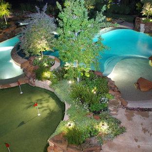 ヒューストンの大きいオーダーメイドトロピカルスタイルのおしゃれなプールの写真