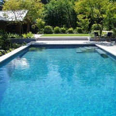contemporary pool by THOMAS KYLE:  Landscape Designer