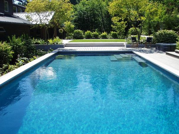 Contemporary Pool by THOMAS KYLE:  Landscape Designer