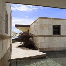 Modern Pool by Sutton Suzuki Architects