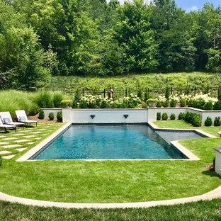 Modelo de piscina con fuente tradicional renovada grande