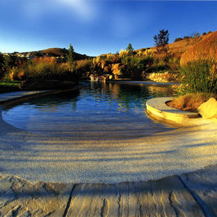 Example of an island style natural pool design in San Francisco