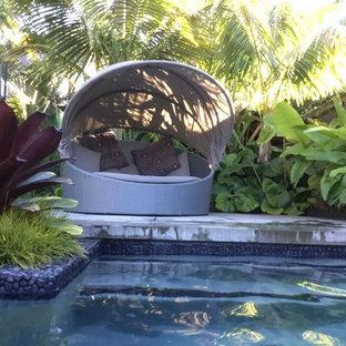 Modelo de piscina alargada, exótica, grande, rectangular, en patio trasero