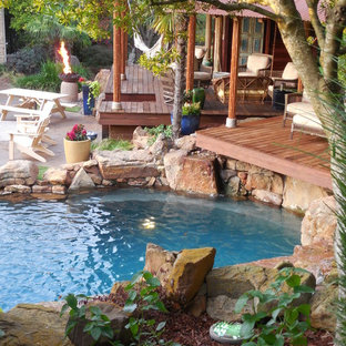 Tropical Oasis-As Seen On Animal Planet-The Pool Master