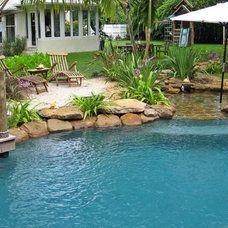 Tropical Pool by Blue Haven Pools of S.E. Florida