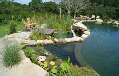 Secrets of a Successful Water Garden