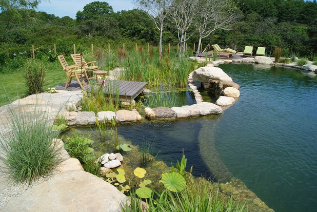 Natural swimming pools more beauty no chemicals for Natural pond maintenance