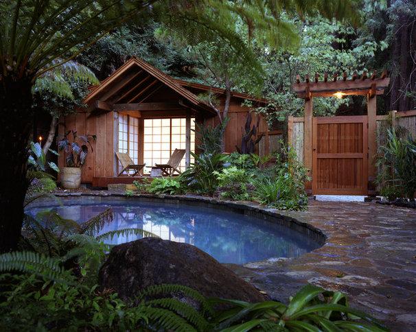 Tropical Pool Tropical Pool