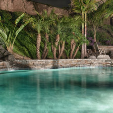 Tropical Pool by JD Design Photography