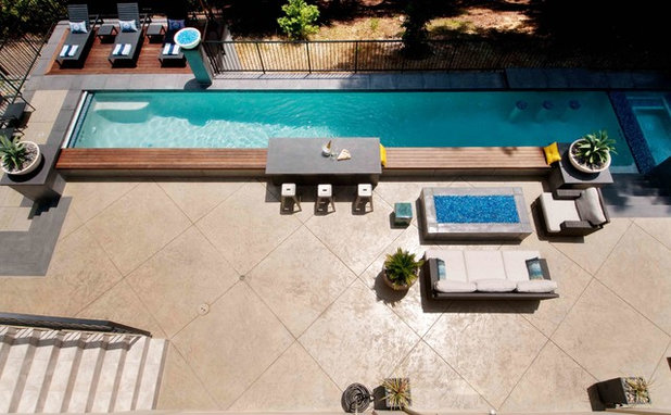 Contemporary Swimming Pool by Tom Ralston Concrete