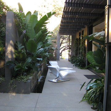Ultra modern pool & water feature in Hollywood Hills, California