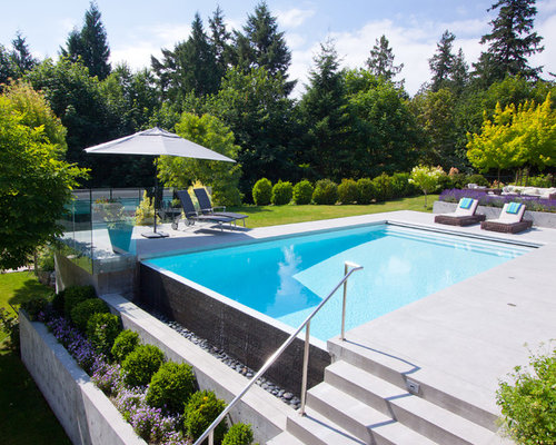 best pool design ideas remodel pictures houzz - Pool Designs Ideas