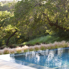 Contemporary Pool by Arterra Landscape Architects