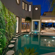Modern Pool by Urban Zeal Planters