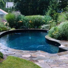 Traditional Pool by Kazdin Pools & Spas