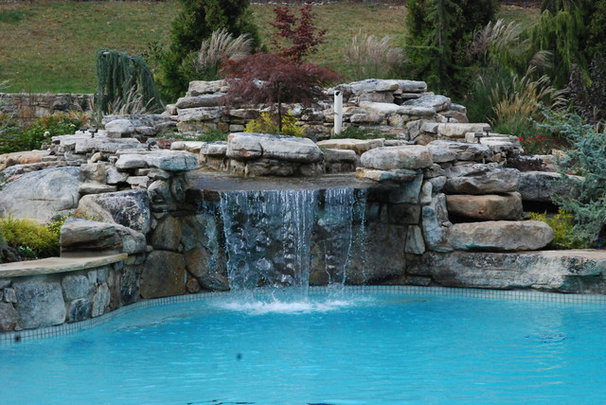 Contemporary Pool by Land & Water Design
