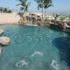 Traditional Pool by Premier Pools and Spas