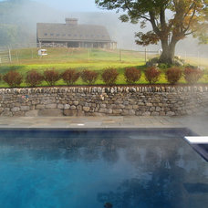 Contemporary Pool by TERRIGENOUS Landscape Architecture