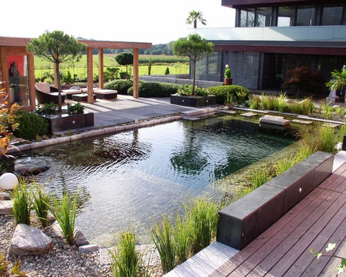 Example Of A Large Trendy Backyard Rectangular Natural Pool House Design In  Other With Decking