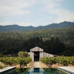 Cottage backyard concrete and rectangular infinity pool photo in San Francisco
